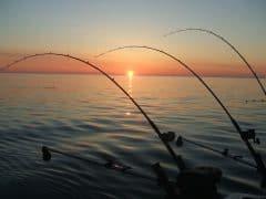 време за риба