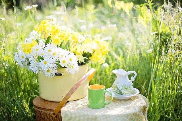 Зелен чай за отслабване?