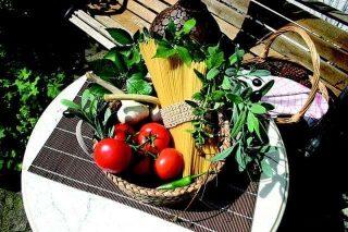 Средиземноморска диета - всичко, което трябва да знаеш