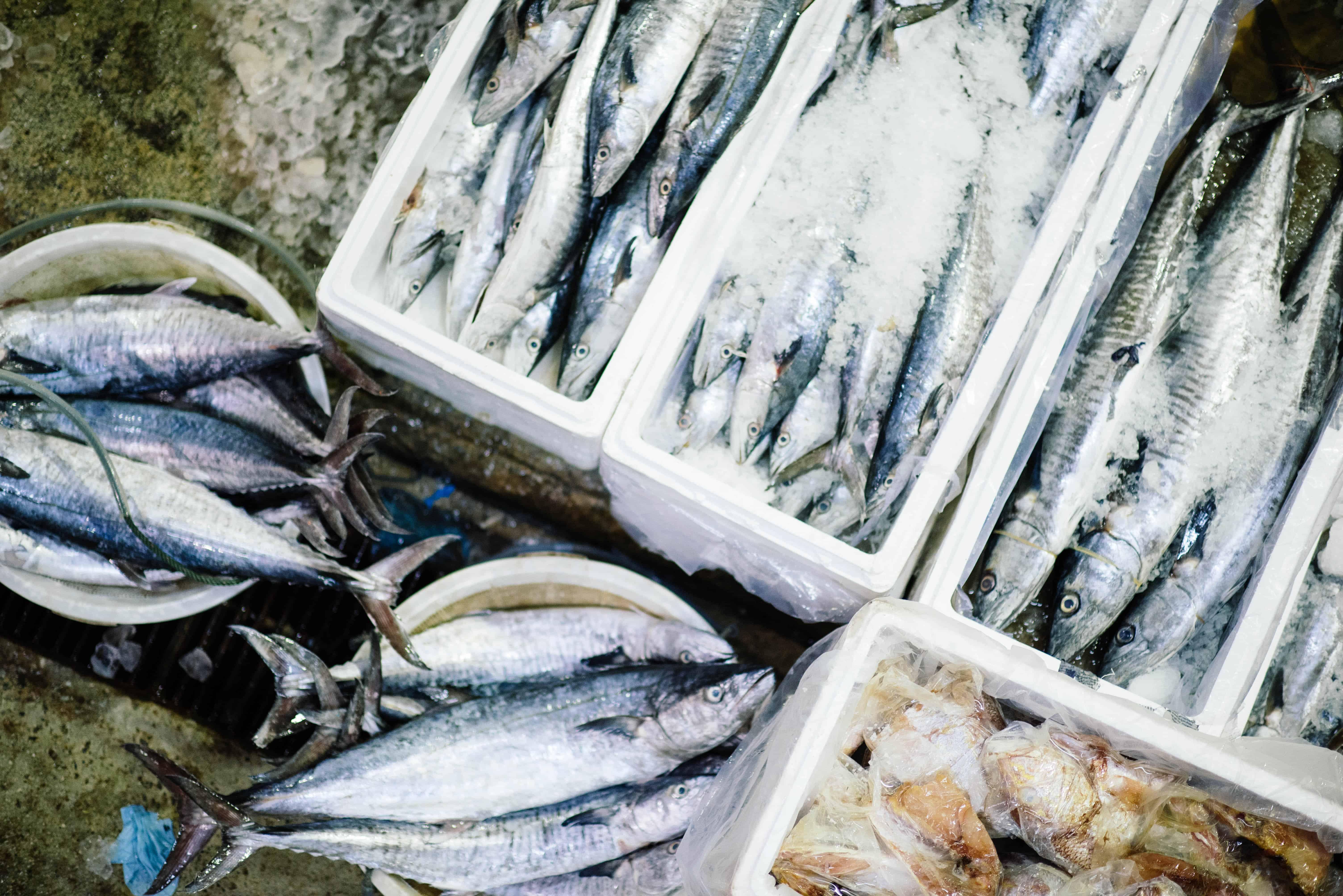 риба в менюто